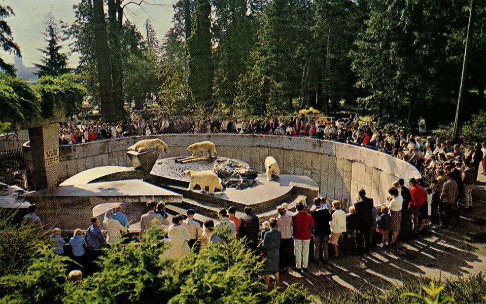 Les Zoos Dans Le Monde Stanley Park Zoo