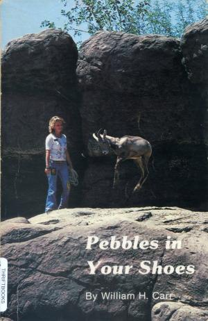 <strong>Peebles in Your Shoes</strong>, William H. Carr, Arizona-Sonora Desert Museum, Tucson, 1982