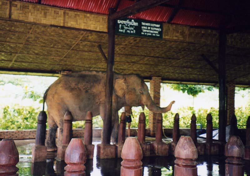 Ban Keun Laos  city photos : Les Zoos dans le Monde Lao Zoo