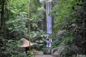 African Waterfall Aviary