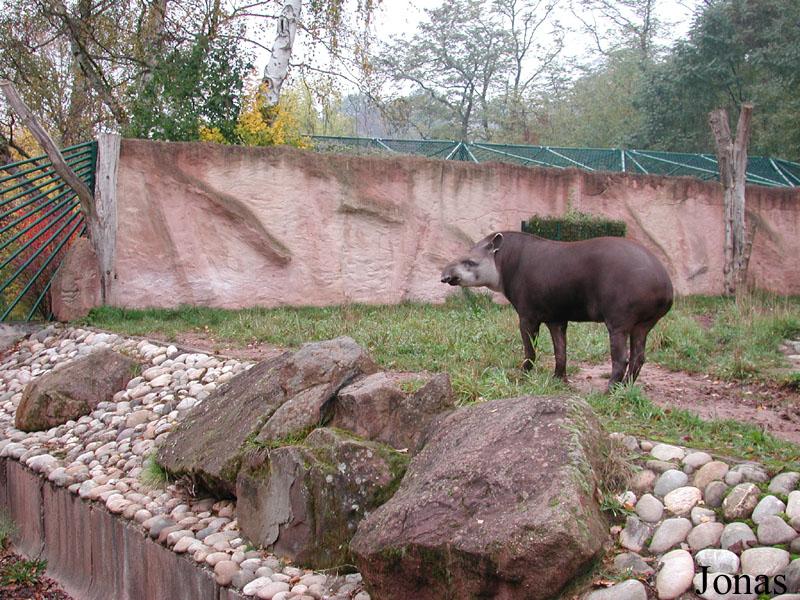 zoo zürich australien haus
