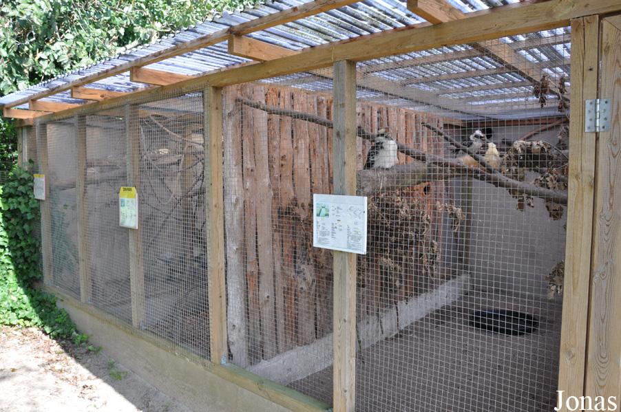 Les zoos dans le monde safari zoo park lintrup for Zoo exterieur
