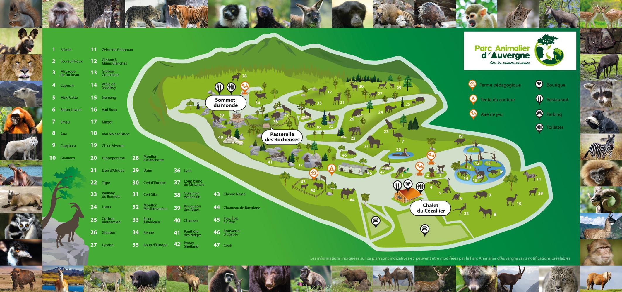les zoos dans le monde parc animalier d 39 auvergne. Black Bedroom Furniture Sets. Home Design Ideas