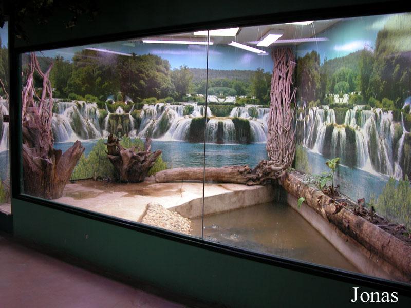 Bassin exterieur pour tortue creteil 1133 - Mobilier jardin walmart brest ...