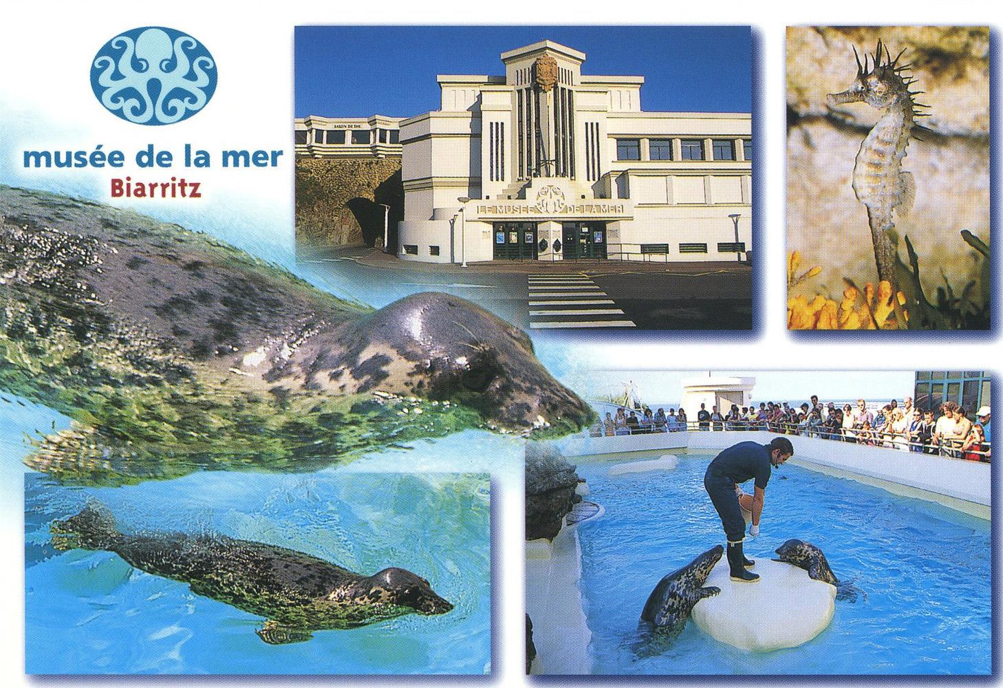 Bien connu Les Zoos dans le Monde - Musée de la Mer de Biarritz TT59