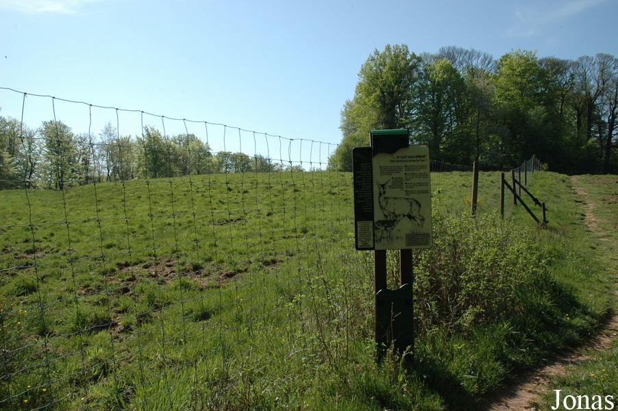 La Petite-Pierre France  city photos gallery : Les Zoos dans le Monde Parc Animalier du Schwarzbach †