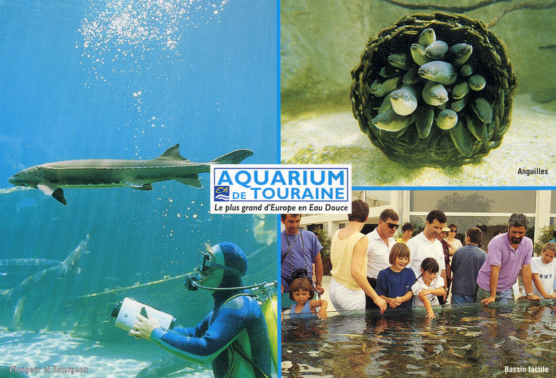 les zoos dans le monde grand aquarium de touraine