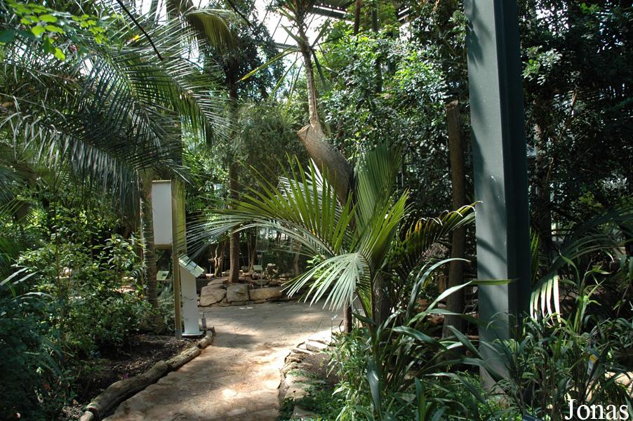 Les zoos dans le monde jardin zoologique de la ville de lyon - Jardin botanique de lyon ...