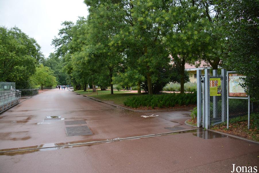 Les zoos dans le monde jardin zoologique de la ville de lyon for Jardin zoologique de lyon