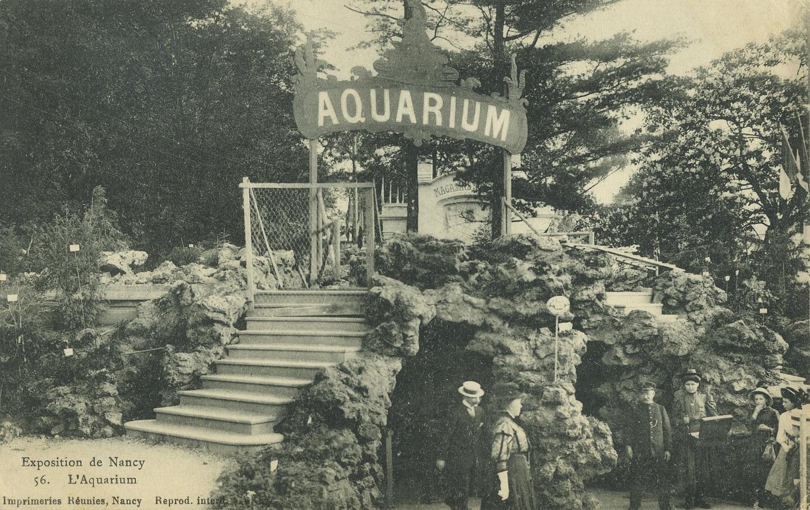Les zoos dans le monde exposition internationale de l 39 est de la france - L est de la france ...