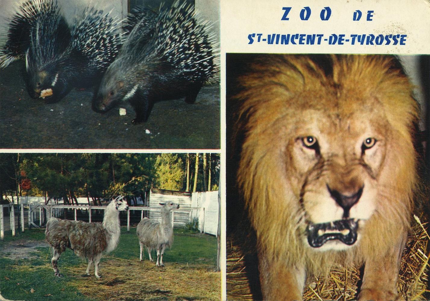 Les zoos dans le monde parc zoologique de saint vincent for Papeterie saint vincent de tyrosse