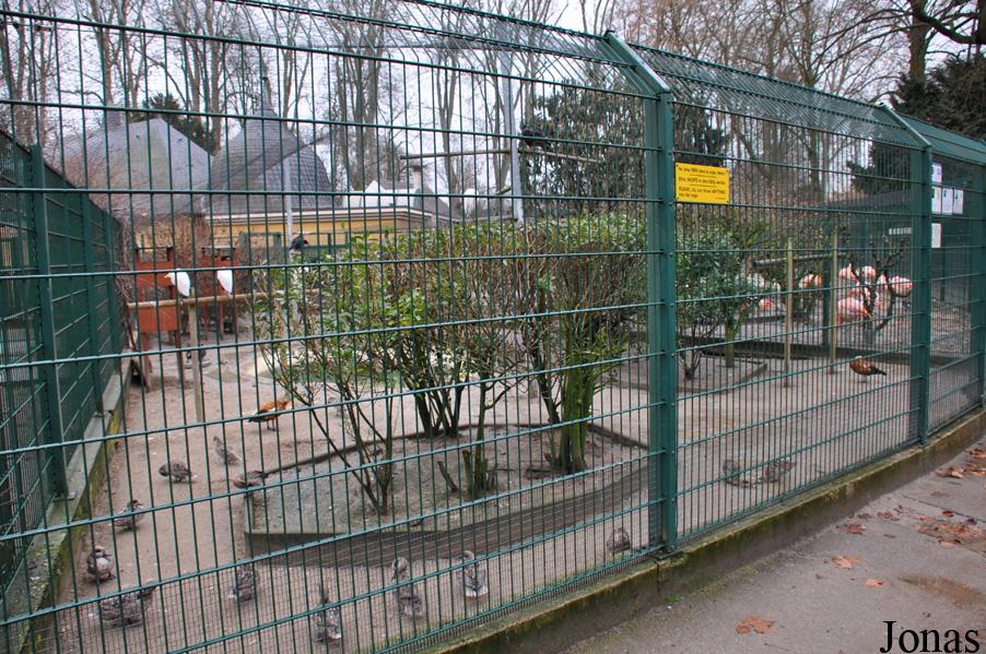 Les zoos dans le monde zoo de l 39 orangerie for Zoo exterieur