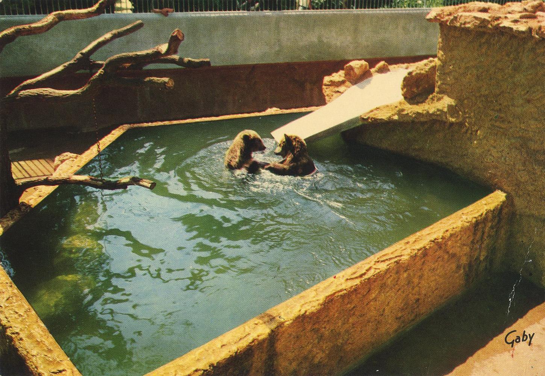Les zoos dans le monde jardin botanique et zoologique de for Jardin botanique tours