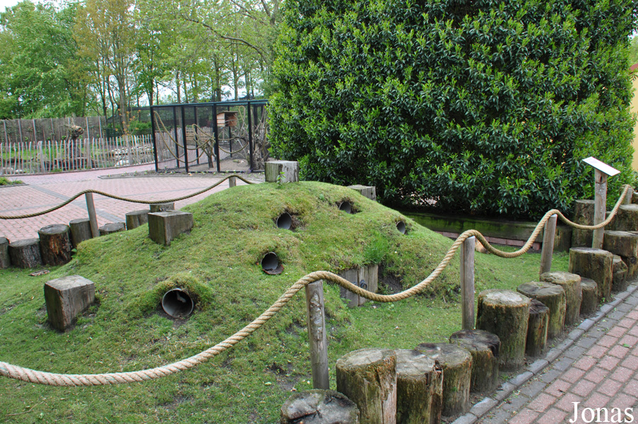 Les zoos dans le monde sanjeszoo for Enclos exterieur pour lapin