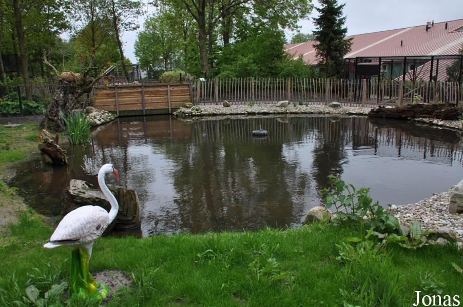 Les zoos dans le monde sanjeszoo - Bassin d eau plastique avignon ...
