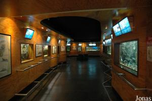 Aquarium hall