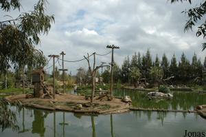 Islands for capuchin monkeys