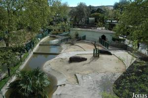 Exhibit for the hippopotamus viewed from the cable lift