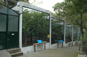 Row of five glass-fronted aviaries for hornbills and pheasants