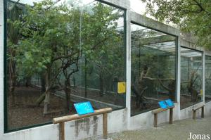 Glass-fronted aviaries for hornbills and pheasants