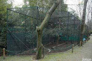 Row of aviaries for curassows