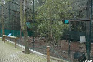 Aviary for Western capercaillies
