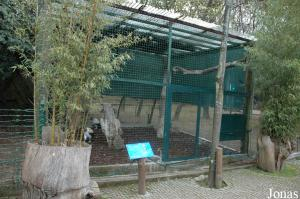 Aviary of the king vultures