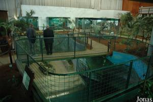 One of the pits for crocodiles
