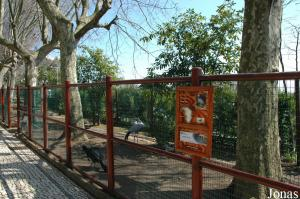 Enclosure of the blue cranes and some curassows