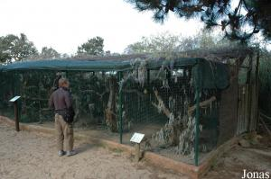 Aviaries for parrots