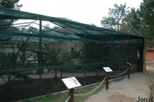 Walk-through aviary for macaws