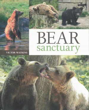 <strong>Bear Sanctuary</strong>, Victor Watkins, Bear Sanctuary Publications,  2011