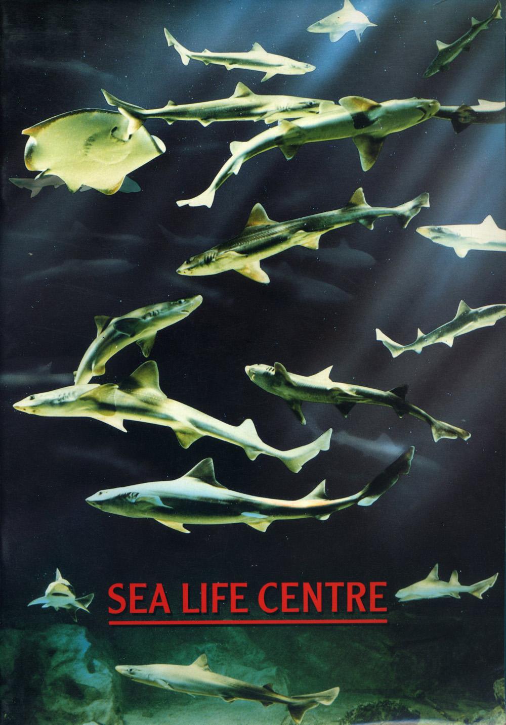 Les Zoos dans le Monde - Scottish Sea Life Sanctuary