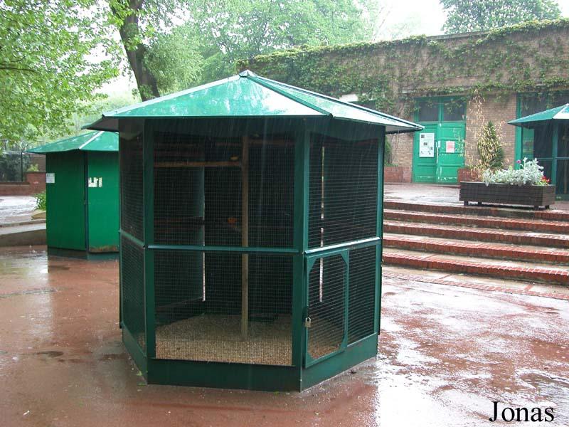 Les zoos dans le monde parc zoologique de lille for Voliere en bois exterieur