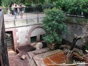Les Zoos Dans Le Monde Menagerie Le Zoo Du Jardin Des Plantes