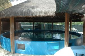 One of the pools of the rehabilitation centre