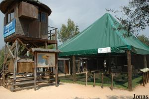 Birds of prey show area