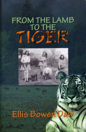 <strong>From the lamb to the tiger</strong>, Ellis Bowen Daw, Memory Lane, 2011